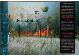 Biodiversité, notre nature pour demain